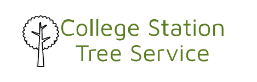College Station Tree Service | Tree Cutting Trimming Pruning & Removal